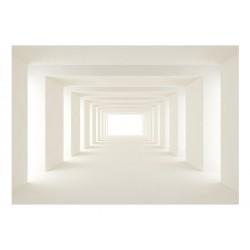 Fototapeta  W stronę światła