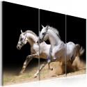 Obraz Konie moc i prędkość