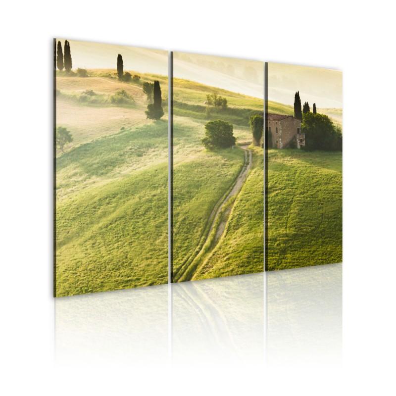 Obraz  Słońce nad Toskanią