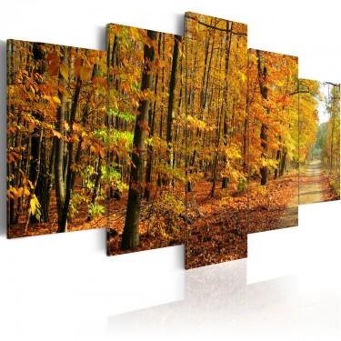 Obraz - Aleja pośród kolorowych liści