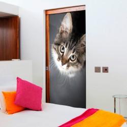 Fototapeta na drzwi - Uroczy kotek