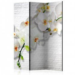 Parawan 3częściowy Miejska orchidea [Parawan]