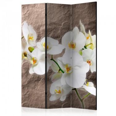 Parawan 3częściowy  Nieskazitelność orchidei [Parawan]