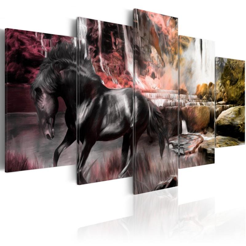 Obraz  Czarny koń na tle karmazynowego nieba