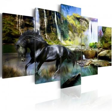 Obraz  Czarny rumak na tle rajskiego wodospadu