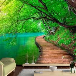 Fototapeta Zielony spokój