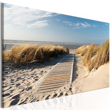 Obraz  Dzika plaża