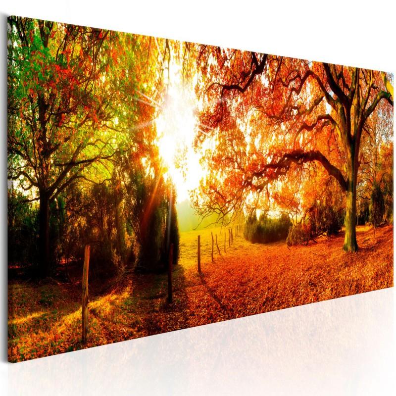 Obraz  Magia jesieni