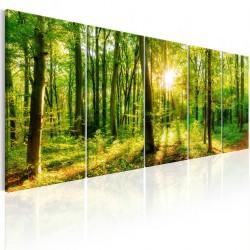 Obraz  Magiczny las