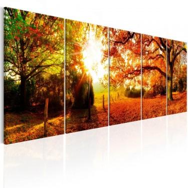 Obraz  Zachwycająca jesień