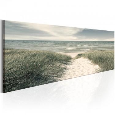 Obraz  Tajemnice morza