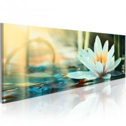 Obraz - Jezioro lotosu