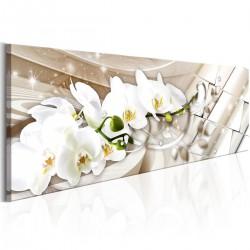 Obraz - Orchidea i abstrakcja