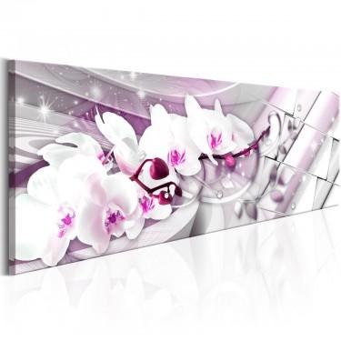 Obraz  Słodkie orchidee
