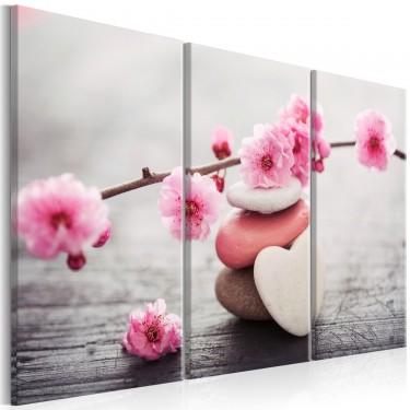 Obraz  Zen Kwiaty wiśni II