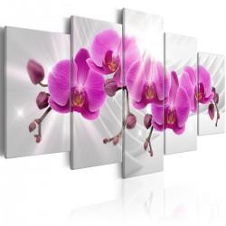 Obraz - Abstrakcyjny ogród: Różowe storczyki
