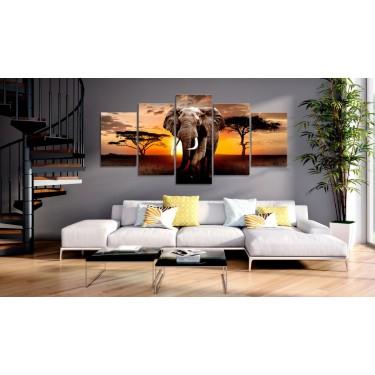 Obraz  Wędrówka słonia