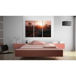 Obraz  Jeleń w blasku słońca I