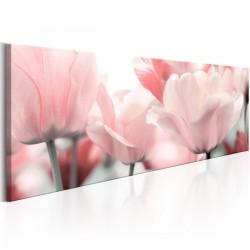 Obraz Różowe tulipany