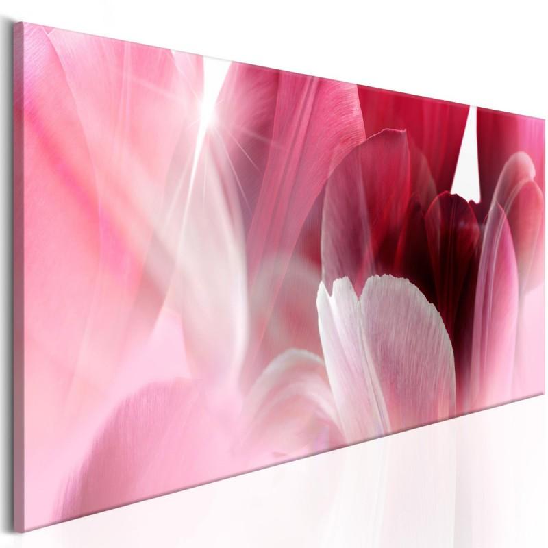 Obraz  Kwiaty Różowe tulipany
