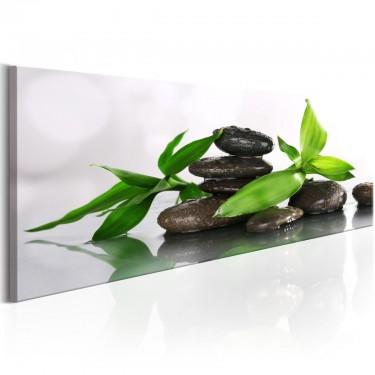 Obraz  SPA bambus i kamienie