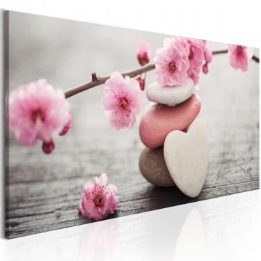 Obraz  Zen Kwiaty wiśni