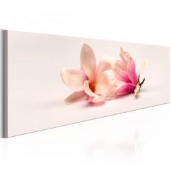 Obraz - Piękne magnolie