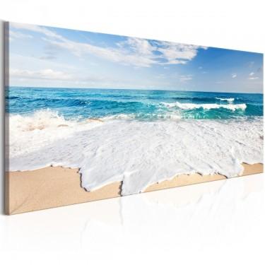 Obraz  Plaża na wyspie Captiva