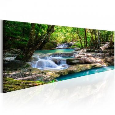 Obraz  Natura Leśny wodospad