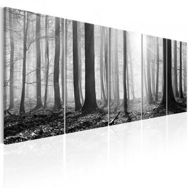 Obraz  Monochromatyczny las