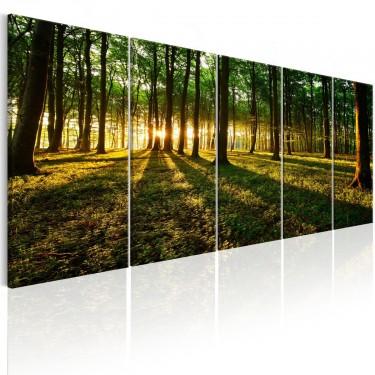 Obraz  Cień drzew I