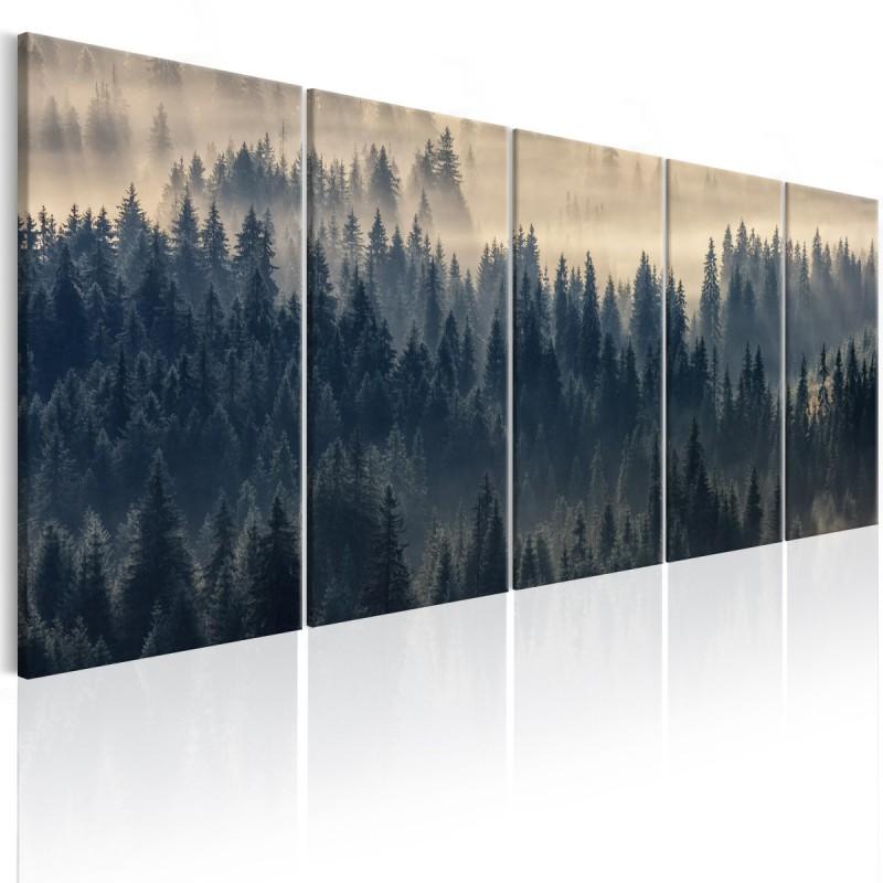 Obraz  Jodły we mgle
