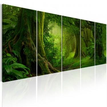 Obraz  Tropikalna dżungla