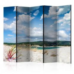 Parawan 5częściowy Plaża na Costa da Morte II [Room Dividers]