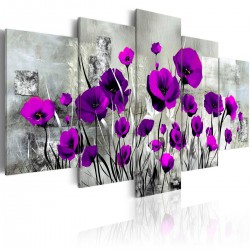 Obraz - Łąka: Purpurowe maki