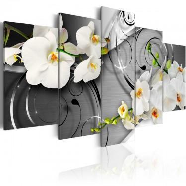 Obraz  Mleczne orchidee