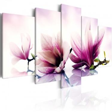 Obraz  Różowe kwiaty magnolie
