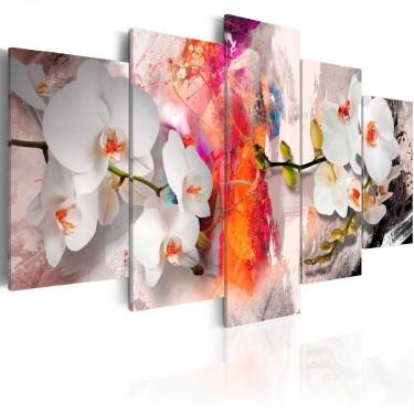 Obraz  Kolorowe tło i storczyki