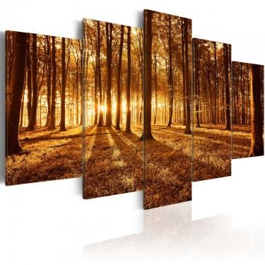 Obraz  Bursztynowy las