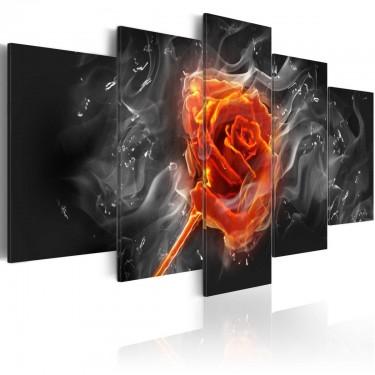 Obraz  Ognista róża