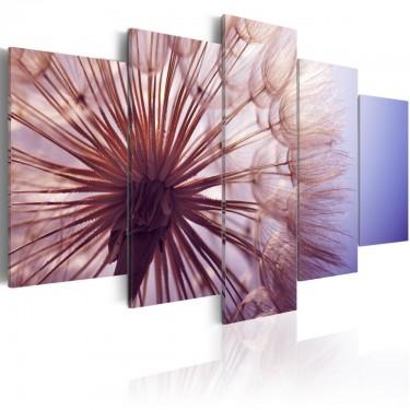 Obraz  Fioletowe olśnienie