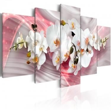 Obraz  Różowa łuna