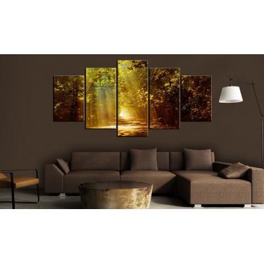 Obraz  Słoneczny las