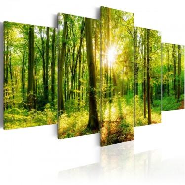 Obraz  Opowieść lasu