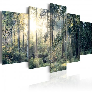 Obraz  Baśniowy krajobraz
