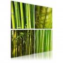 Obraz Bambusy