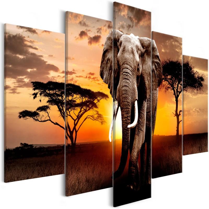 Obraz  Wędrówka słonia (5częściowy) szeroki