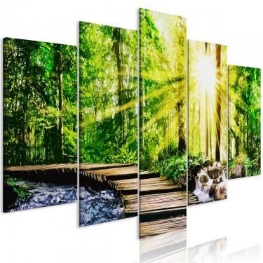 Obraz  Leśna kładka (5częściowy) szeroki