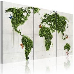 Obraz Zielone lądy