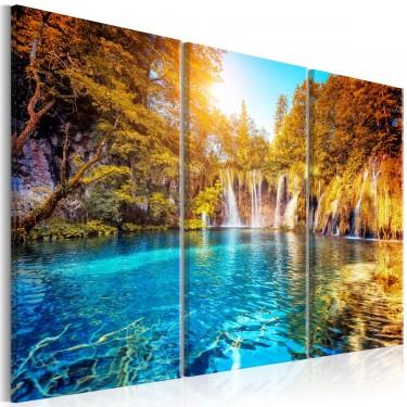 Obraz  Wodospady słonecznego lasu